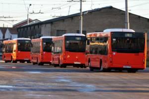 Новые автобусы «в деталях»