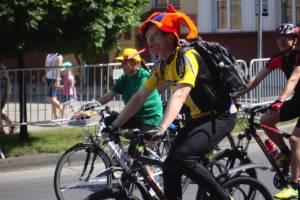 Хаски, коляски и велосипеды (фоторепортаж)